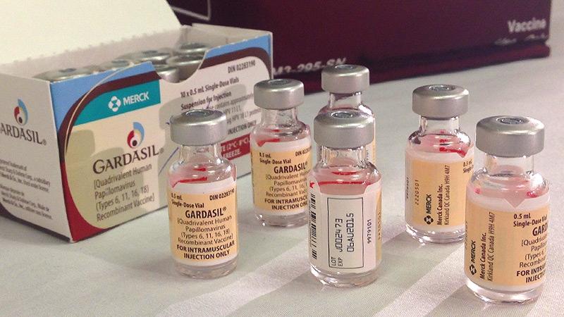 humán papillomavírus gardasil