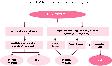 okozhat-e vérzést a hpv vírus