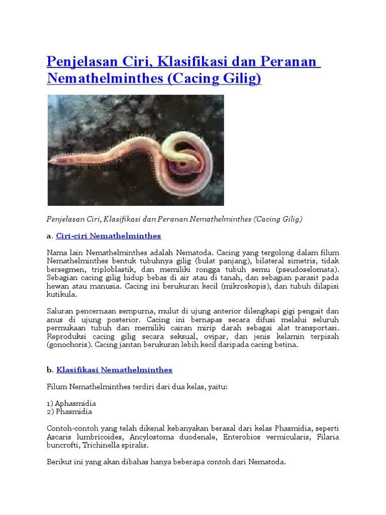 Nemathelminthes szaporodik pada - Ciri kelas nemathelminthes