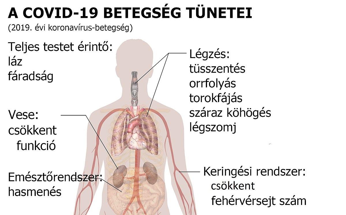 féreg kezelés 19