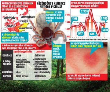 duxi csipet kezelés parazita tabletta az emberek megelőzésére