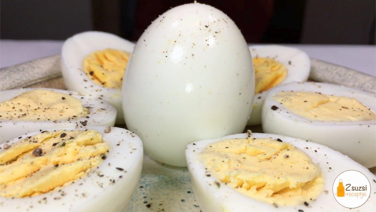 enterobiasis tojás féreg