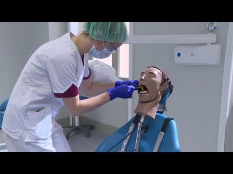 Férgek típusai és fogászati kezelés, Bélféreg - Így szabaduljunk tőle! | BENU Gyógyszertárak