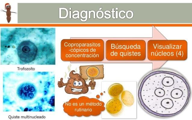 a giardia duodenalis diagnózisa