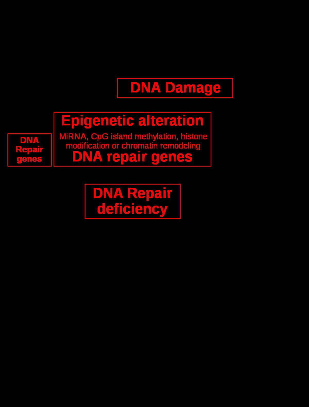 paraziták komplex kezelése