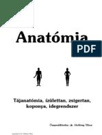 maxilláris ductalis papilloma)