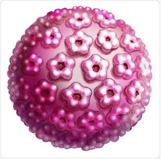 hpv vírus és kolposzkópia)