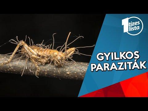 a paraziták eltávolítják)
