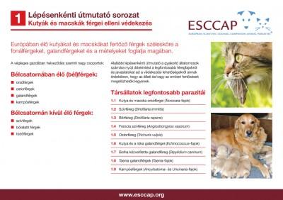 Kerepes-Vet Állatgyógyászati Központ