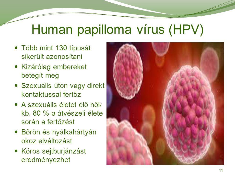 papilloma vírus teherbe eshet